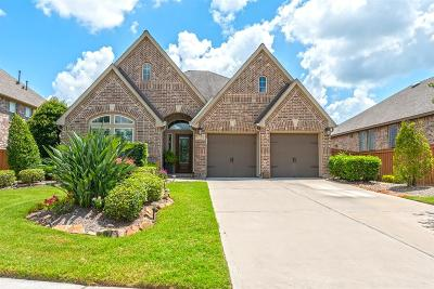 Fort Bend County Single Family Home For Sale: 17707 Luminaire Lane