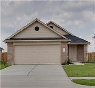 Houston Single Family Home For Sale: 21431 Palma Grove Way