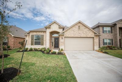 La Marque Single Family Home For Sale: 744 Cedar Gate Lane