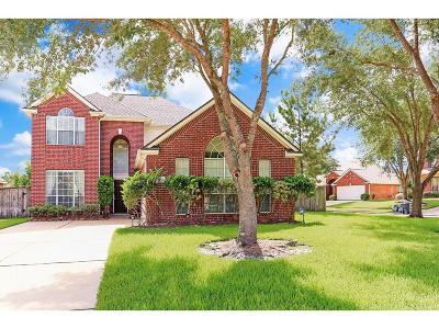 Sugar Land Single Family Home For Sale: 1302 Leigh Gardens