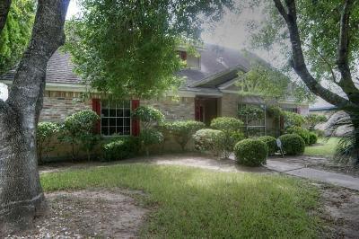 Houston Single Family Home For Sale: 7403 Maczali Drive
