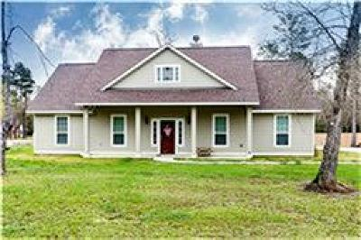 Dayton Single Family Home For Sale: 31 Private Road 6353