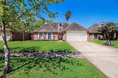 Sugar Land Single Family Home For Sale: 16718 Tranquil Drive