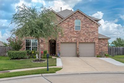 League City TX Single Family Home For Sale: $319,800