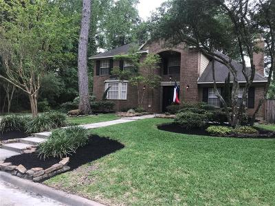 Houston Single Family Home For Sale: 3003 Woodland View Drive