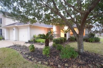Friendswood Single Family Home For Sale: 1489 Garden Lakes Drive