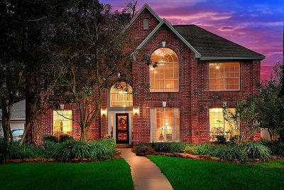 The Woodlands Single Family Home For Sale: 18 S Dragonwood Place