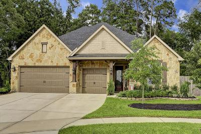 Spring Single Family Home For Sale: 31815 Serrano Bluff Lane