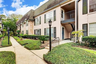 Houston Condo/Townhouse For Sale: 1807 Stoney Brook Drive #103