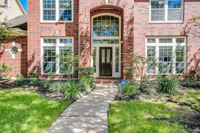 Sugar Land Single Family Home For Sale: 2302 Upland Park Drive