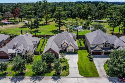 Tomball Single Family Home For Sale: 12015 Rampy Green Drive
