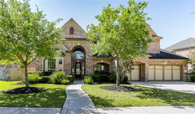 Sugar Land Single Family Home For Sale: 4503 Riley Way Lane