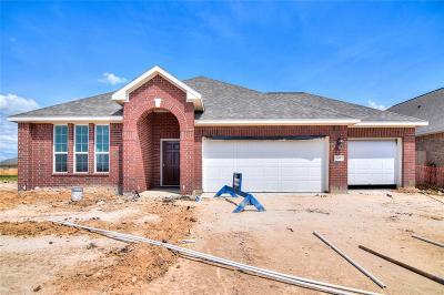 Alvin Single Family Home For Sale: 305 Cabernet Drive