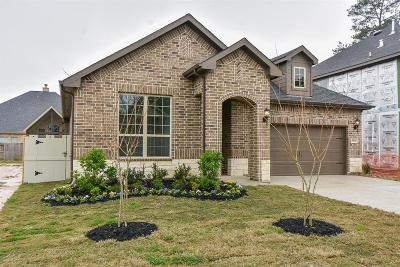 Conroe Single Family Home For Sale: 9816 Sweet Flag Court