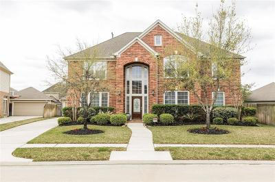 Katy Single Family Home For Sale: 9711 Dusty Manor Lane