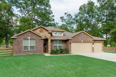 Conroe Single Family Home For Sale: 9201 Sierra Del Carmen