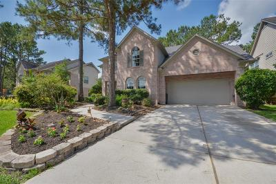 Houston Single Family Home For Sale: 5011 Scenic Woods Trail