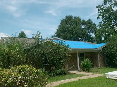New Caney Single Family Home For Sale: 22893 Antique Lane