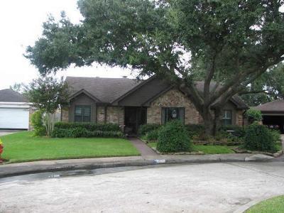 Houston Single Family Home For Sale: 10506 Sagemeadow Lane Lane