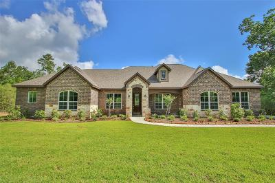 Montgomery Single Family Home For Sale: 26080 Crown Ranch Boulevard