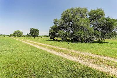 Fayette County Farm & Ranch For Sale: 200 Rose Lane
