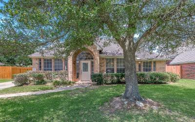 Seabrook Single Family Home For Sale: 4111 Sand Dollar Court