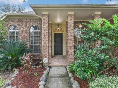 League City Single Family Home For Sale: 3119 Watercastle Court