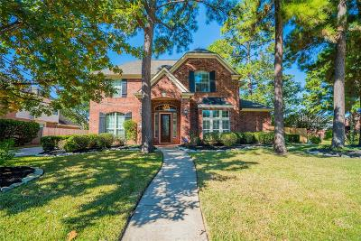 Tomball Single Family Home For Sale: 15802 Oak Island Drive