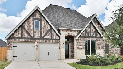 Pearland Single Family Home For Sale: 3116 Cactus Grove Lane