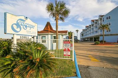 Galveston Condo/Townhouse For Sale: 10811 Termini San Luis Pass Road #2322
