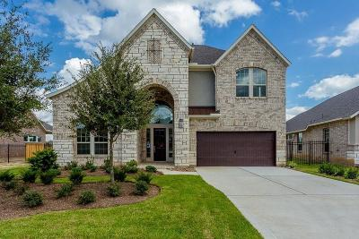The Woodlands Single Family Home For Sale: 34 Botanical Vista Drive