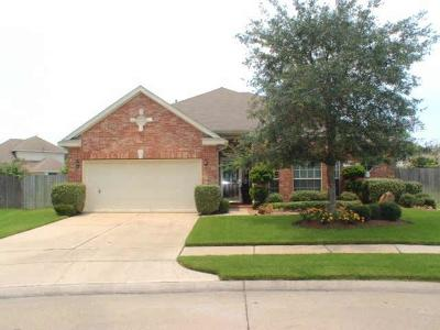 Pearland Rental For Rent: 802 Tennyson Drive