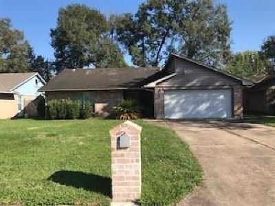 Houston Single Family Home For Sale: 247 Taranto Lane