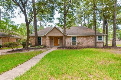 Houston Single Family Home For Sale: 1967 Shadow Rock Drive