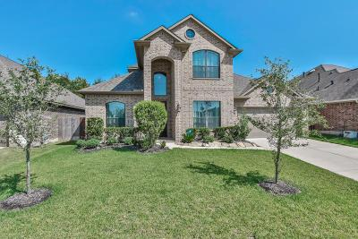 Tomball Single Family Home For Sale: 21202 Magic Spell Drive