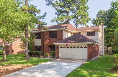 Houston Single Family Home For Sale: 3210 Golden Willow Drive