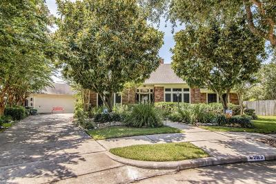 League City Single Family Home For Sale: 2213 Summer Reef Drive