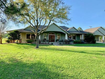 Friendswood Single Family Home For Sale: 806 Evergreen Drive