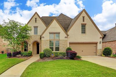 Riverstone Single Family Home For Sale: 5807 Emmit Creek