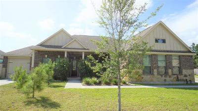 Tomball Single Family Home For Sale: 31027 Raleigh Creek Drive