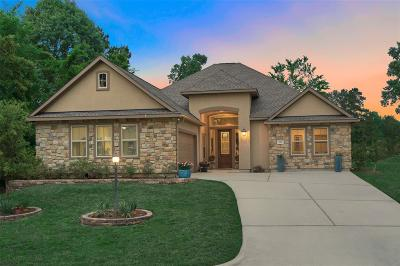 Montgomery County Single Family Home For Sale: 195 West Pines Drive