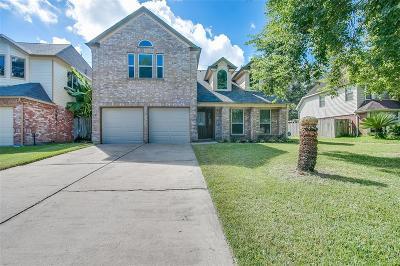 Lake Olympia, Lake Olympia/Villa Del Lago Single Family Home For Sale: 4343 Palmer Plantation Drive
