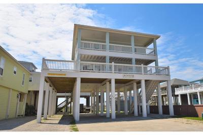 Galveston County Single Family Home For Sale: 845 S Jacks Road