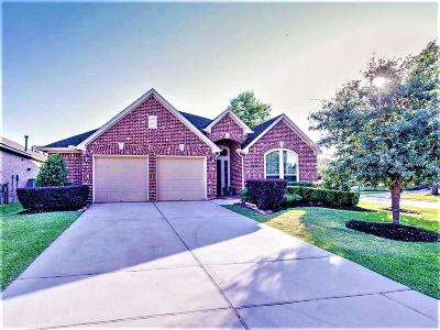 Montgomery Single Family Home For Sale: 127 Knollbrook Circle