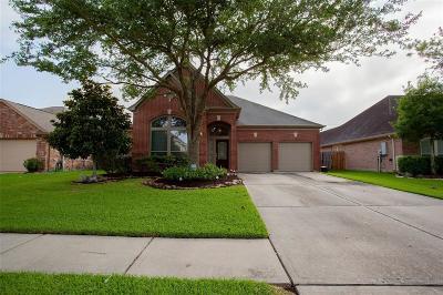 League City Single Family Home For Sale: 6106 Castle Peak Lane