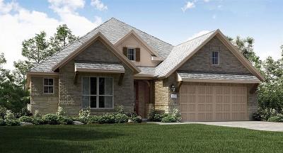 Lakes Of Savannah Single Family Home For Sale: 13518 Golden Plantation Lane