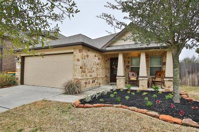 Cypress Single Family Home For Sale: 20502 S Blue Hyacinth Drive