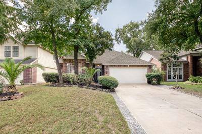 Houston Single Family Home For Sale: 4130 Mountain Peak Way