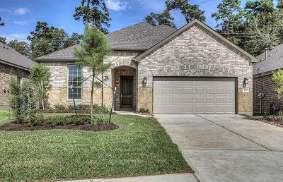 The Woodlands Single Family Home For Sale: 371 Connemara