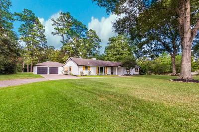 Cypress Single Family Home For Sale: 12638 W Shadow Lake Lane